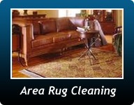 Charlotte Air Duct Cleaning mold removal